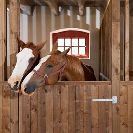 China Internal Portable Horse Stall Panels Easy Installation Customized Brand distributor